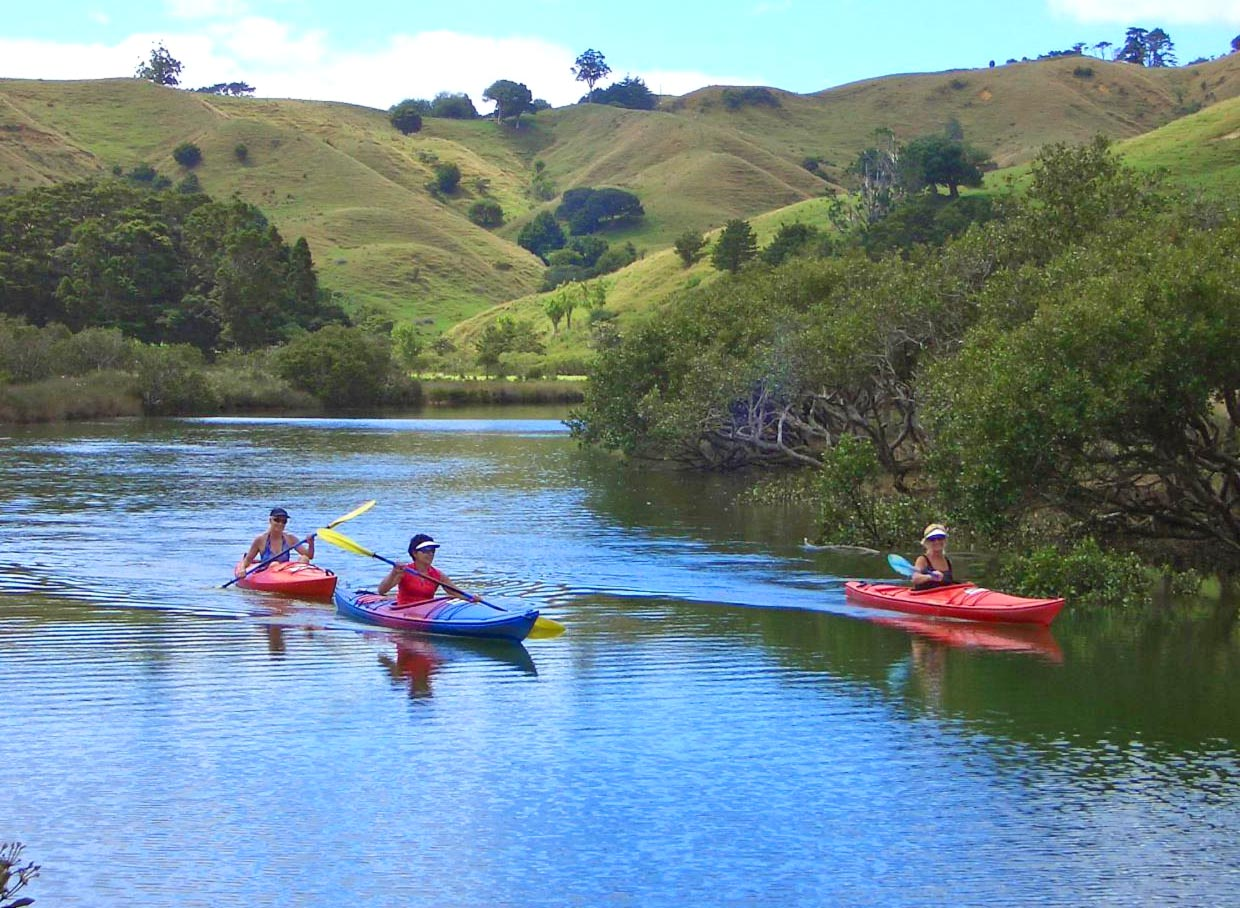 puhoi river canoe hire for corporates