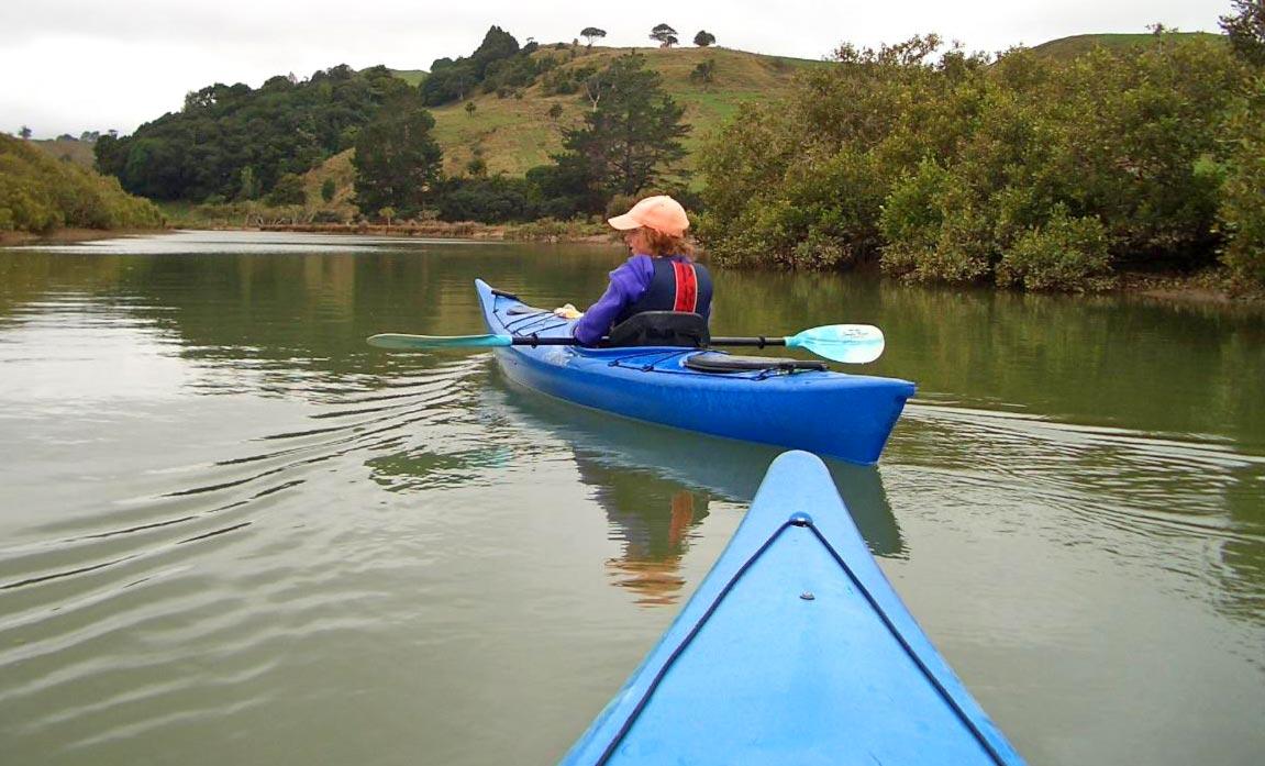 Puhoi river kayak hire for schools